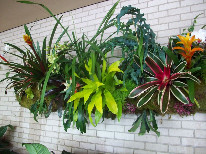 Orchid wall planter 4